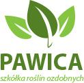 Szkółka Pawica